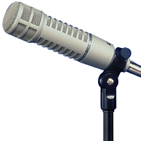 Electro-Voice RE20 - Cardioid Variable-D Dynamic Voiceover Microphone